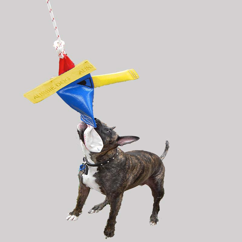 Staffy dog tugging on Bungee Chook Heavy Duty dog toy