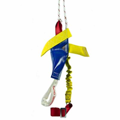 Large Bungee Chook dog toy
