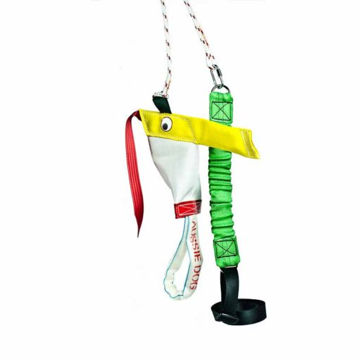 The standard bungee chook interactive dog toy