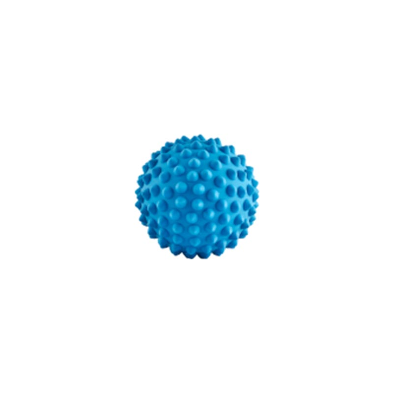Blue catch ball for dogs