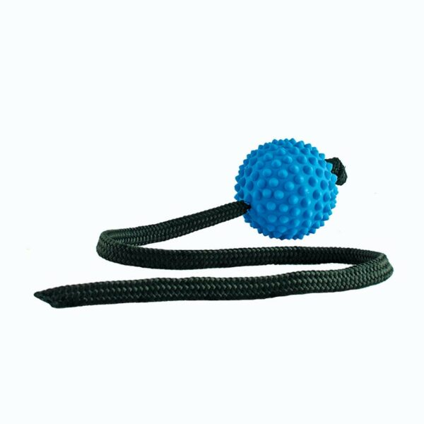 Blue Long Ball interactive dog toy