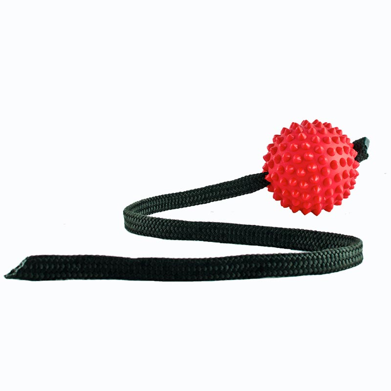 Red Long Ball interactive dog toy