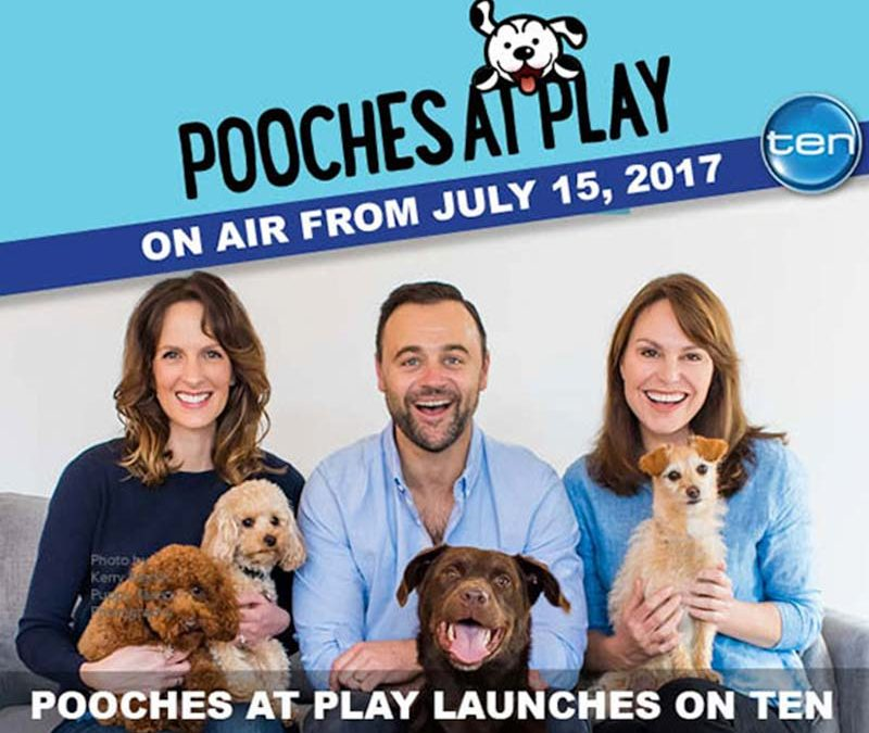 Pooches at play TV show series 1