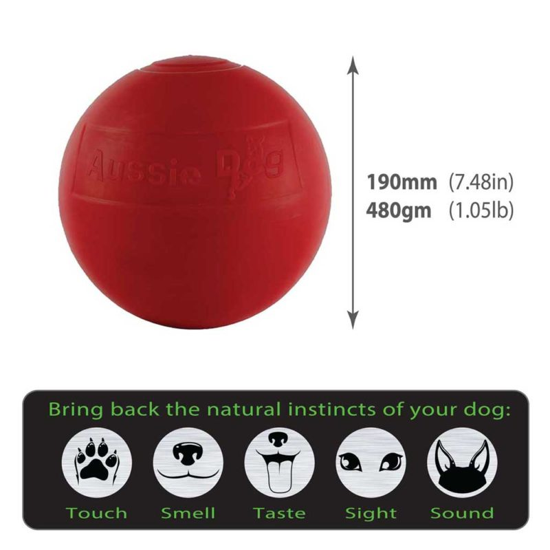 Enduro Ball medium size guide