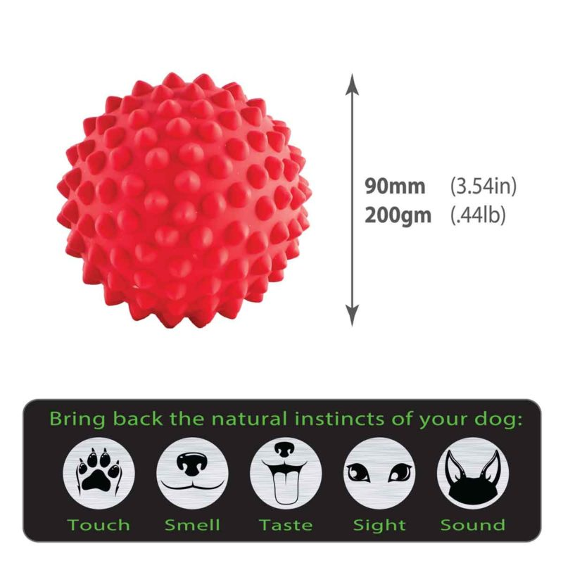 Catch Ball size guide