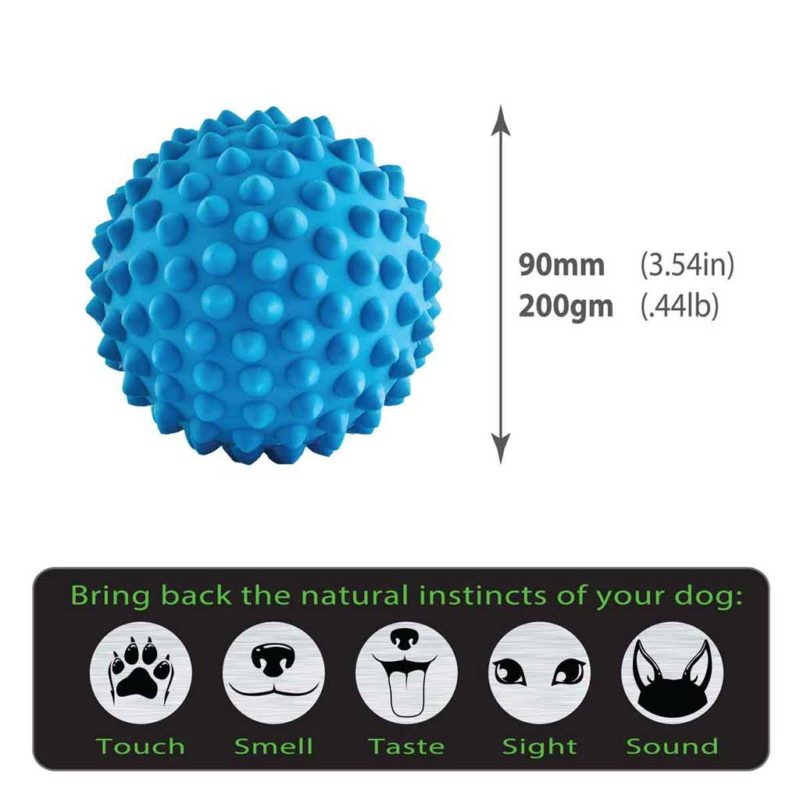 Catch Ball blue size guide