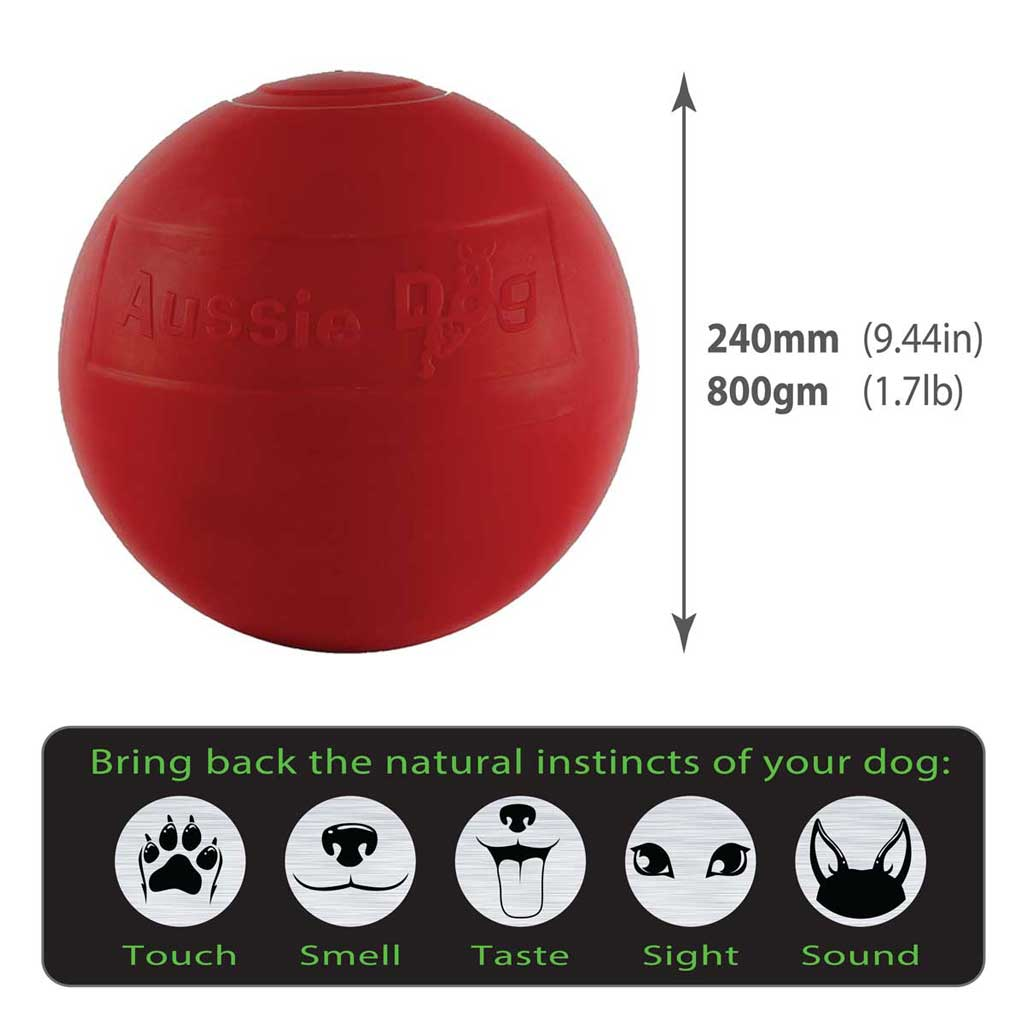 Enduro Ball Large size guide