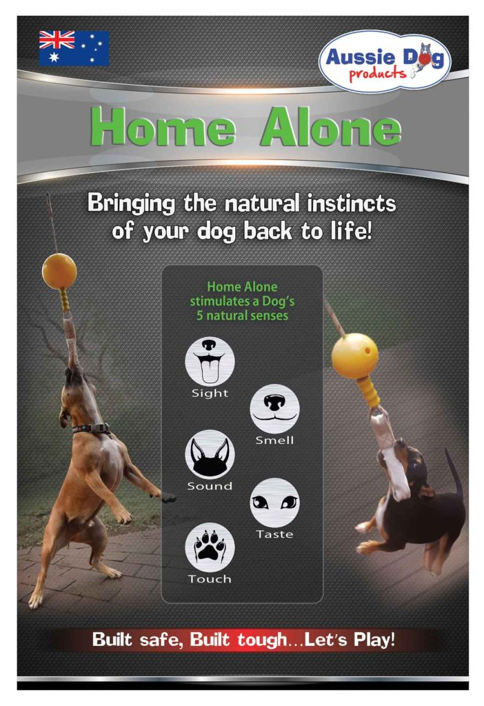 Home Alone Dog Toy