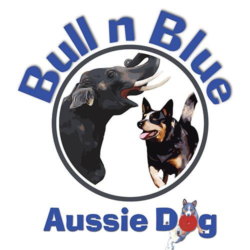 bull n blue logo